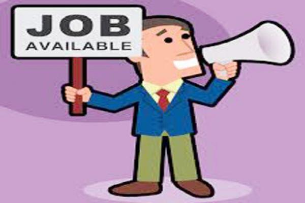 91 candidates selected in job fair