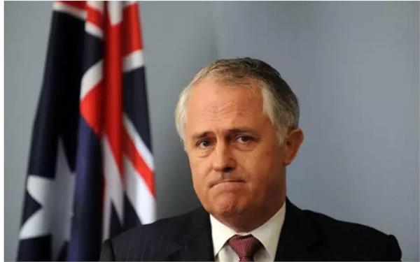 australia s govt loses bypolls