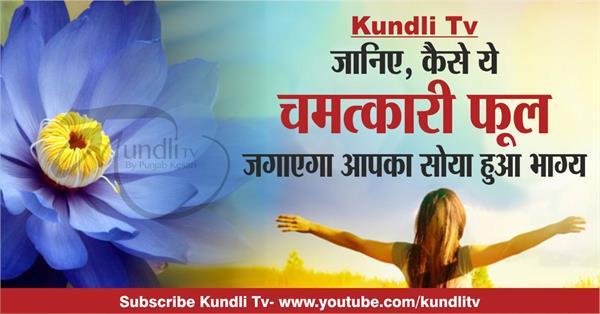 flower upay for kundli dosh