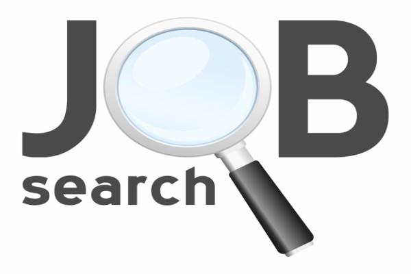 chhattisgarh forest department  job salary candidate