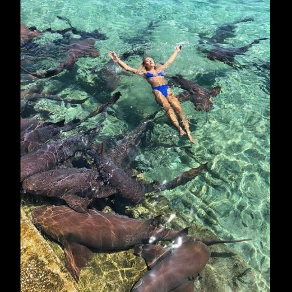 instagram  katrina jarotski attacked by shark during photoshoot