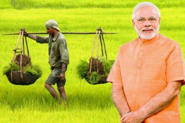 government will increase the msp of kharif crop