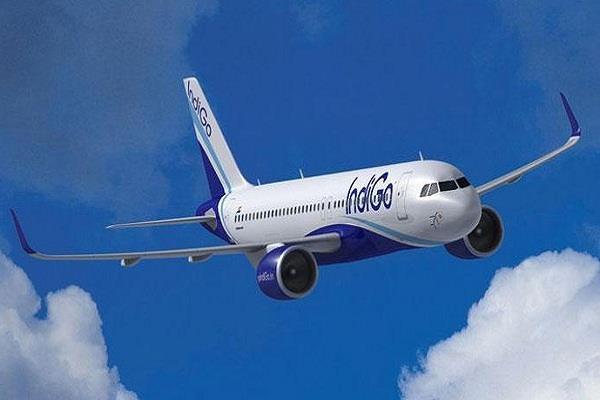 indigo plane threatens to hijack passenger custody