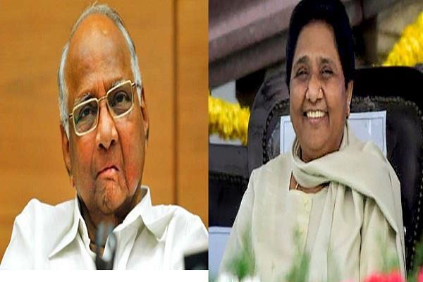 sharad pawar meets mayawati discussions on coalition