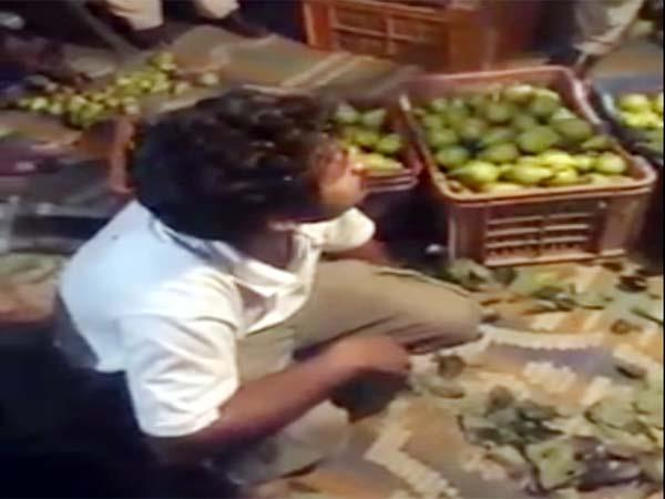 people caught the two person during stole pears from the gardens