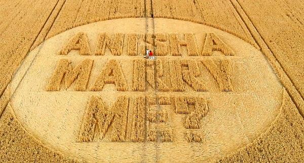 uk girlfriend prays for wedding proposal at maize farm