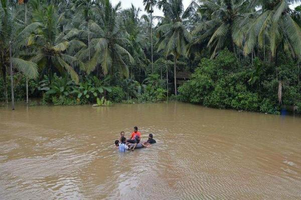 kerala you also want to help the flood victims please contact here