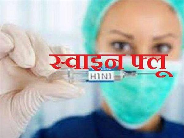 swine flu in mp