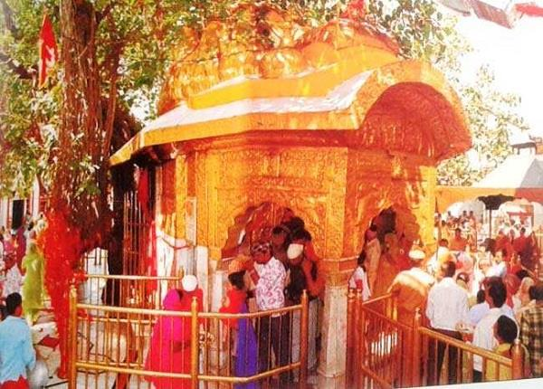 chintpurni in devotees in front of gasp arrangement