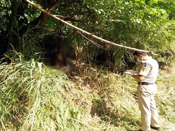deadbody found in field from hanging with tree