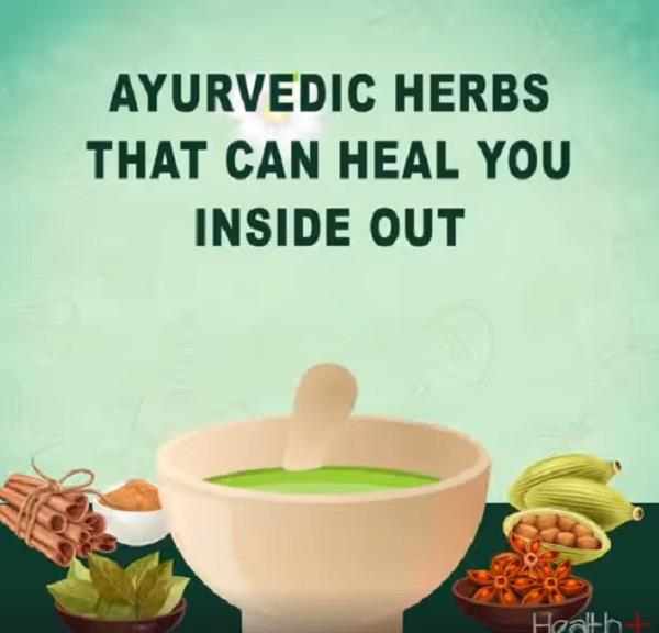 ayurvedic herbs that can heal you inside out
