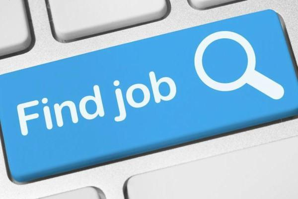 job salary candidate  aiesl