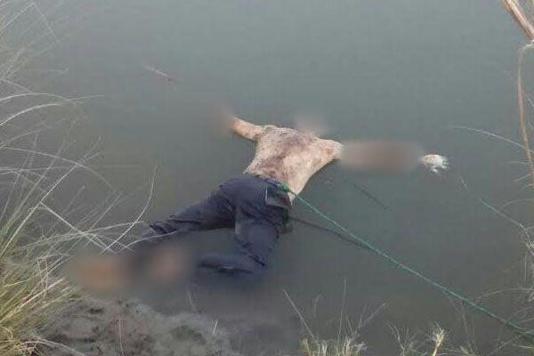 2 dead bodies found in dharakot canal