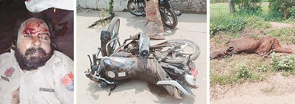 2 dead including home guards in road accident