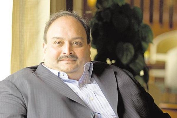 mehul choksi s rise will be difficult india extradition request to antigua