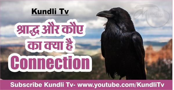 what is the connection between crow and shradh