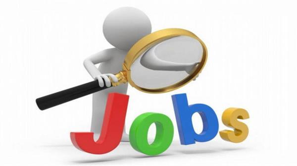 recruitment graduate application on junior panchayat secretaries