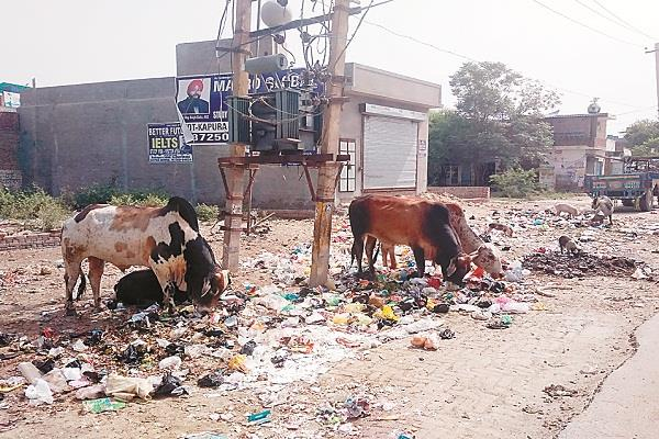 trouble for people making litter dump on mudki road