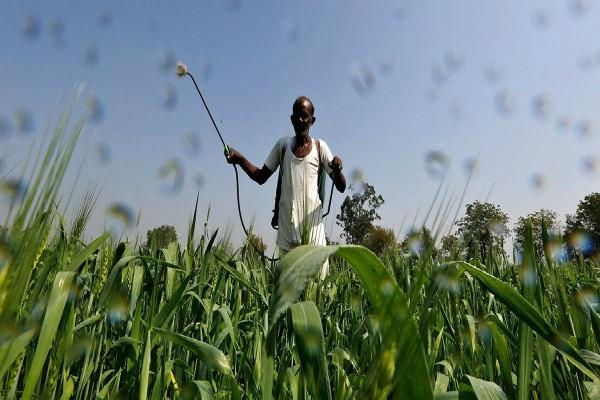 government approves pm aasha scheme for farmers
