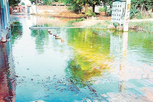 bhainder khurd s ward no 5 has transformed the form of chhapra