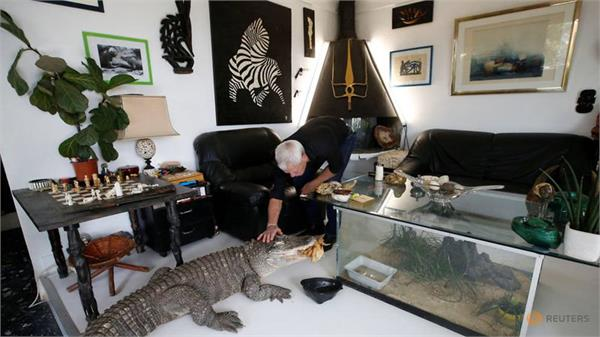 frenchman philippe gillet live with 400 reptiles