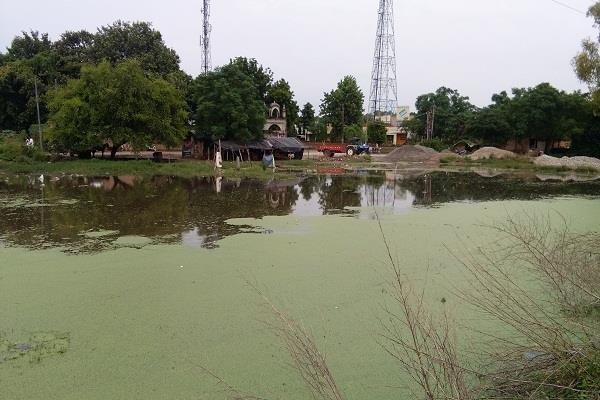 dirt spoiled kathgarh  condition punjab news