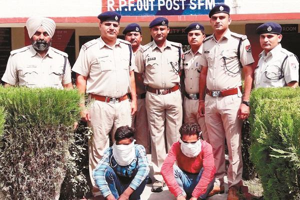 members  gang stealing grain trains arrested punjab news