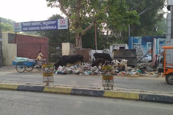 people scared of litter dump outside civil surgeon s office