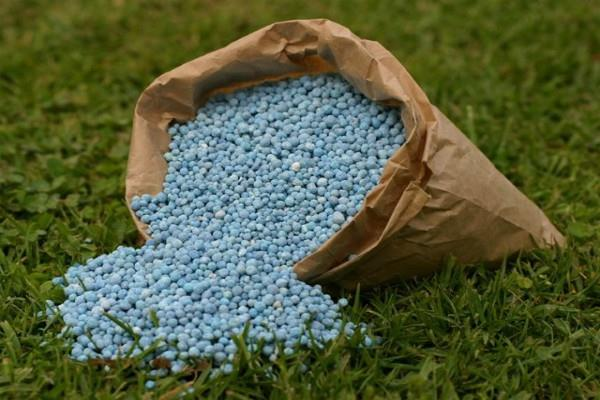 the burden on farmers will increase fertilizers 26 percent expensive