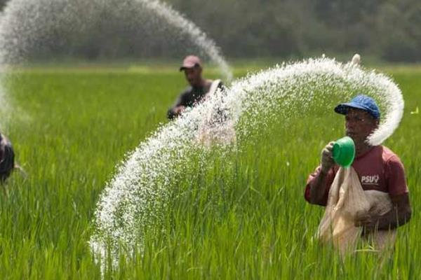 hurl gets land on lease to revive 3 urea plants