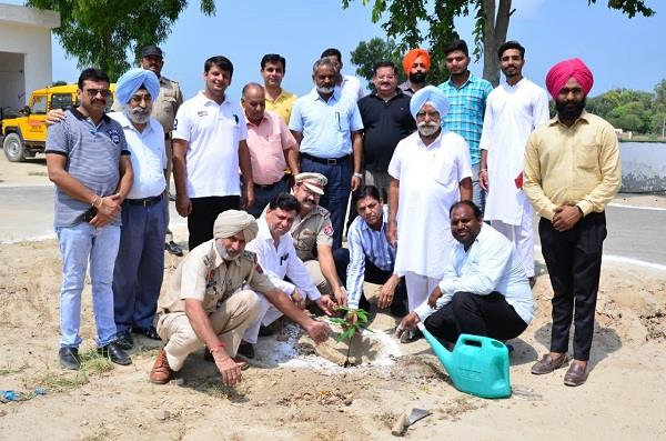 plants planted in college on the sacrifice day of lala jagat narayan