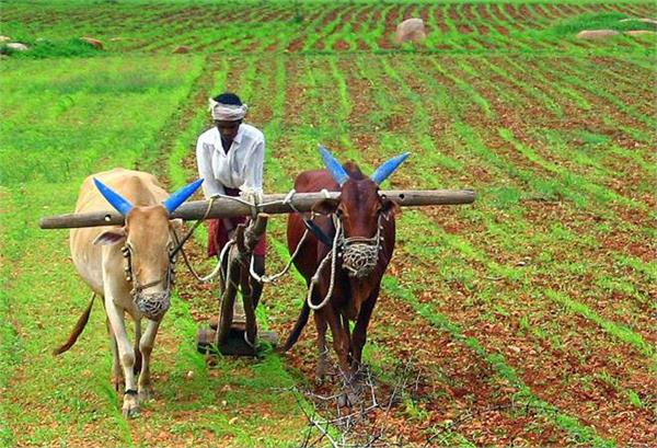 india is an agricultural country