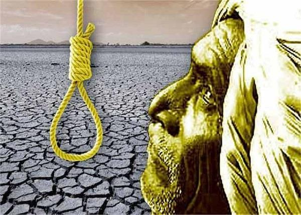 4 667 farmers suicides in last 15 years