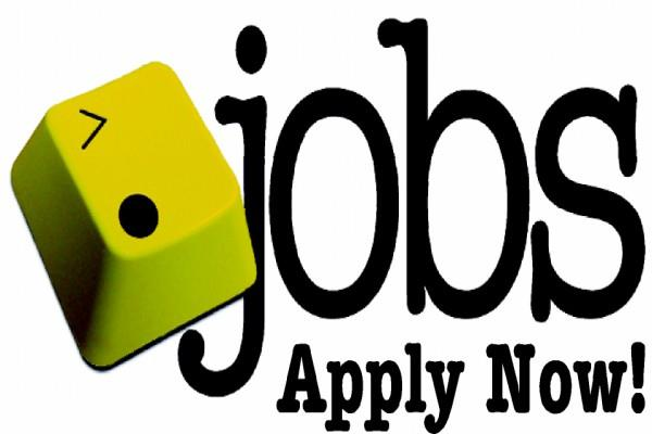 ssb odisha  job salary candidate