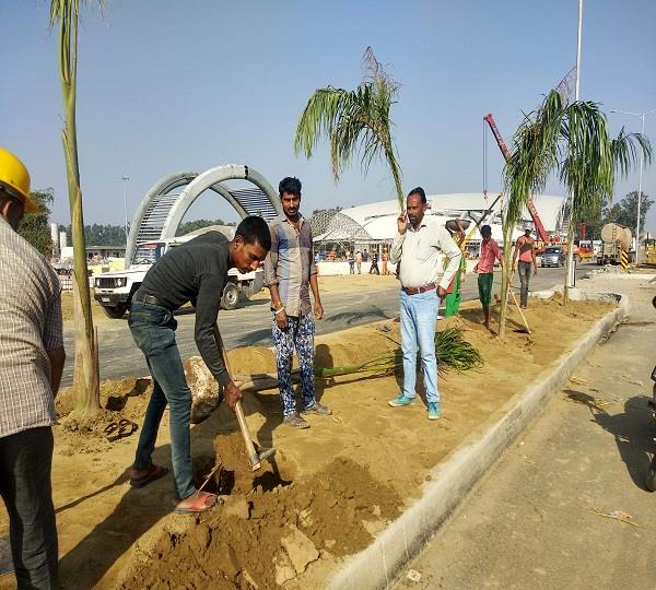 kartarpur corridor will be decorated with spider lilies palmeria flowers