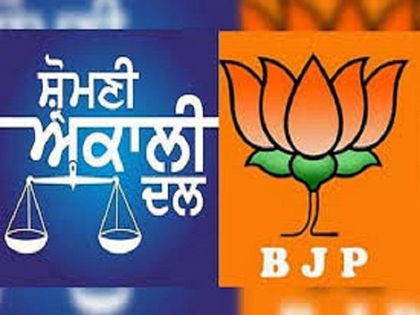 clash between akali bjp relation