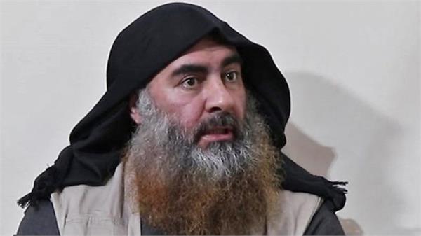 baghdadi cremated after dna investigation