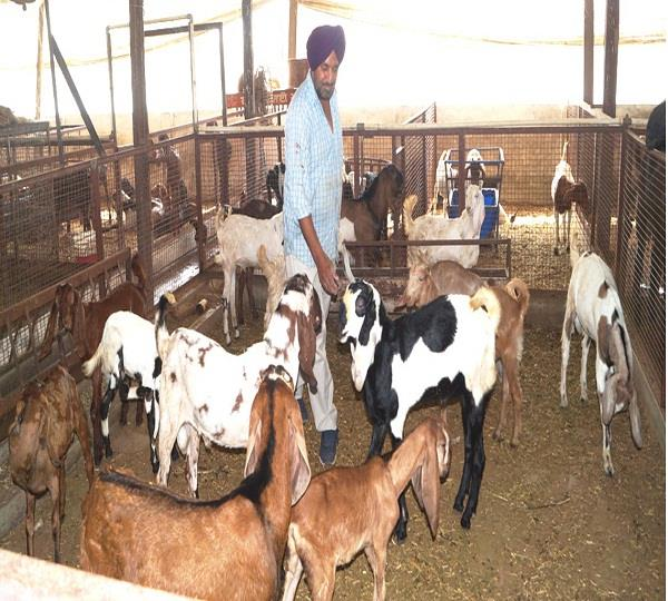 malkapur khyala is an example of agricultural diversity