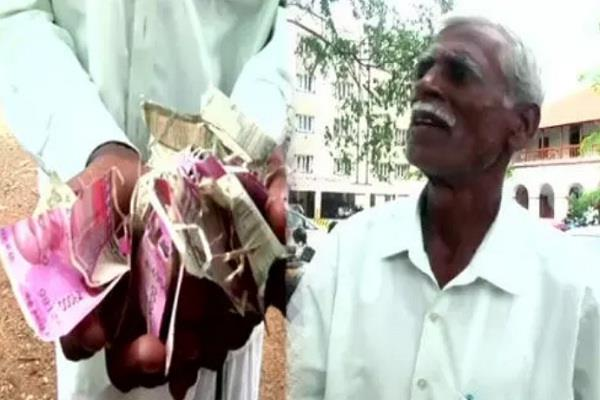 tamil nadu coimbatore farmer bank