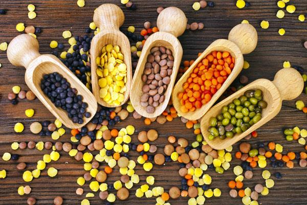 government can increase import deadline to control pulses prices