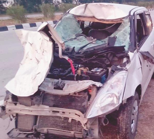 car collided with animal 3 injured