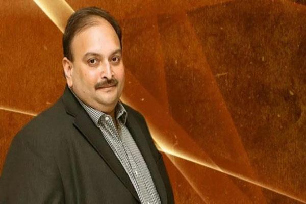 mehul choksi cheated punjab sind bank of rs 44 crore