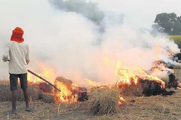 notice to 49 farmers stubble burning by satellite in mathura 8