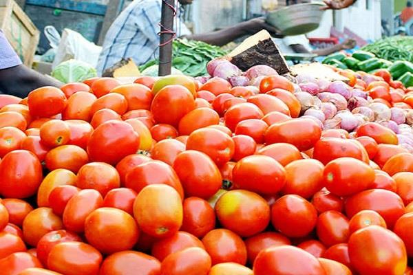 tomato will be sold for rs 55 per kg at successful outlets of mother dairy