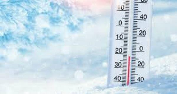 adampur and faridkot were the coldest in punjab