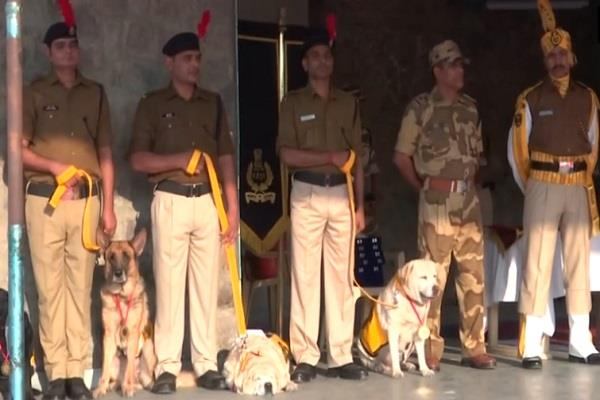 rajdhani security shield 7 sniffer dogs retired