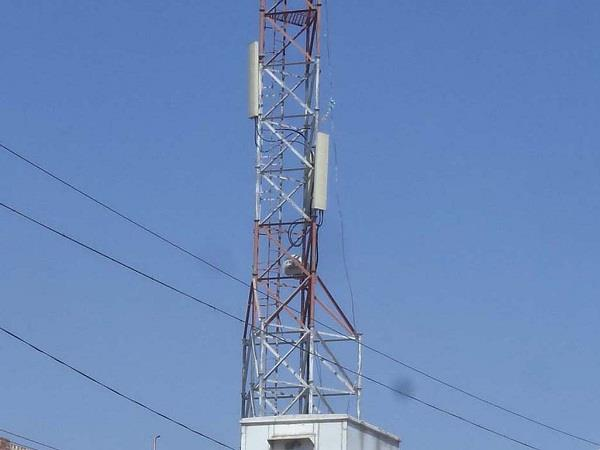 mobile towers harmful for humans and birds
