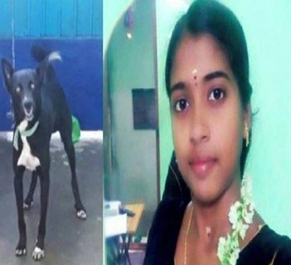 girl commits suicide in dog love