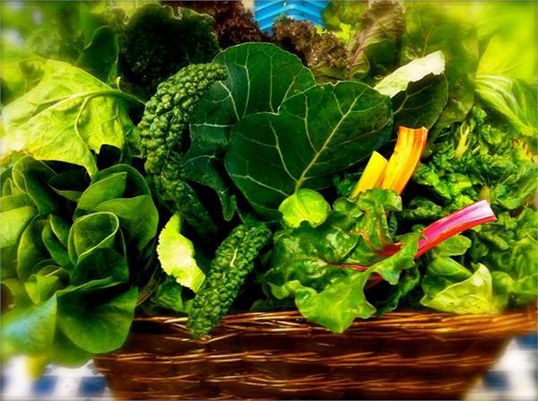 सर्दियों में खाएं 10 हरी सब्जियां, नहीं होगा जोड़ों में दर्द, मिलेंगे और भी फायदे