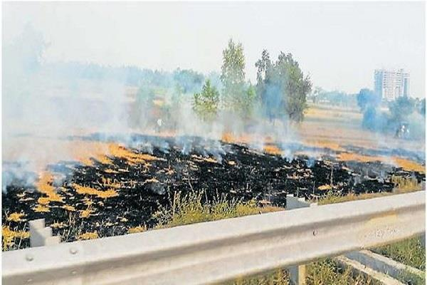 case filed against three farmers for burning stubble in panchkula